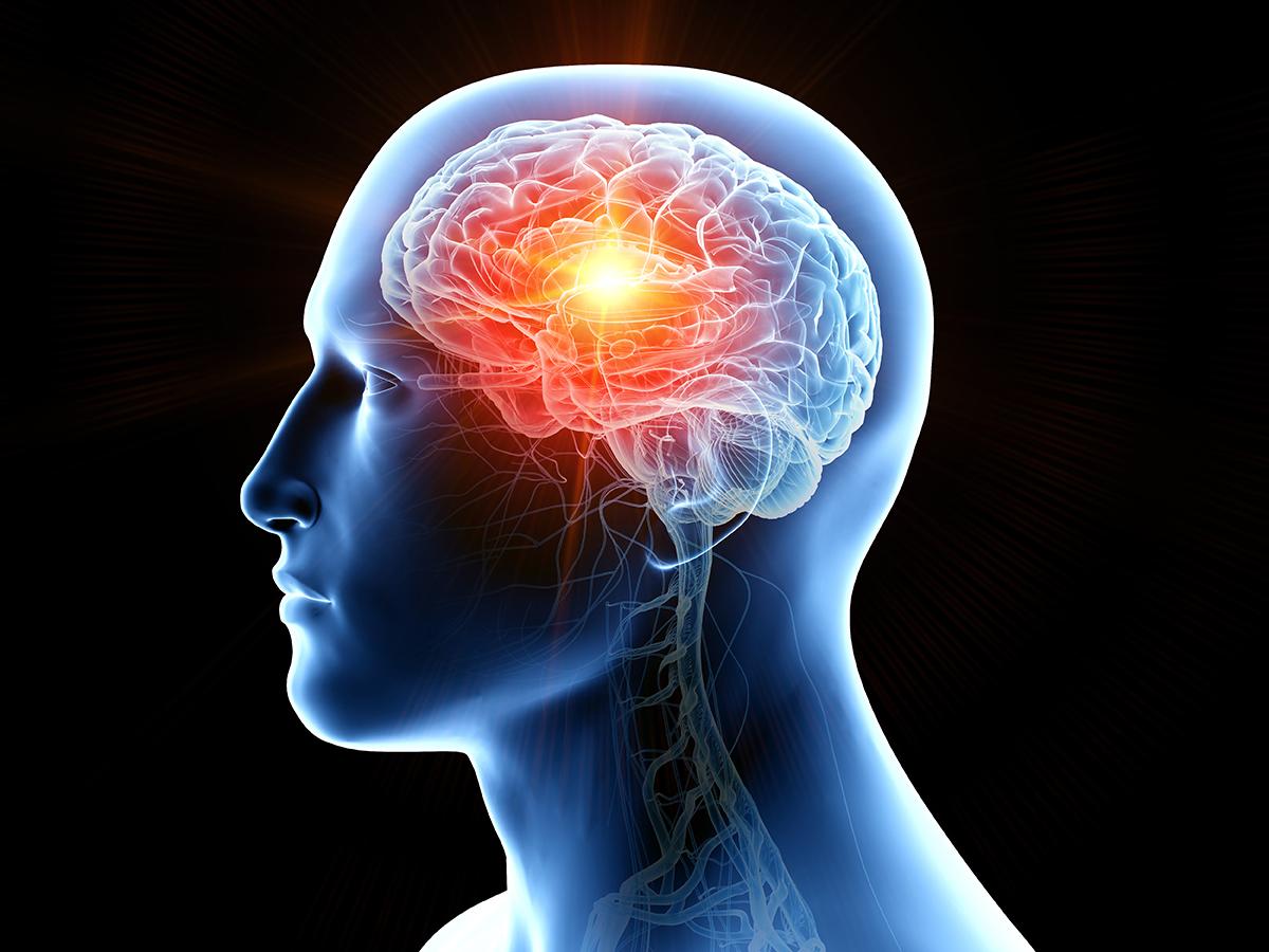 ピラティスで姿勢改善! 脳を活性化させよう
